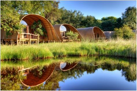 Botswana - Camp Okavango