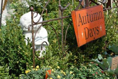 autumndays