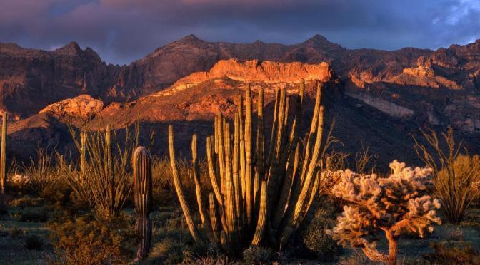 Amazing National Parks around the World!