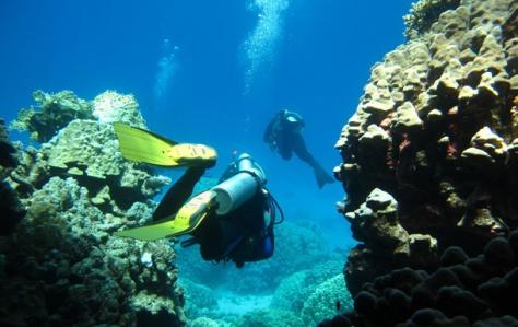 underwater diving in spain