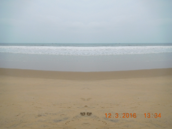 Chandrabhaga Beach