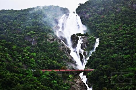 Dudhsagar-Falls goa