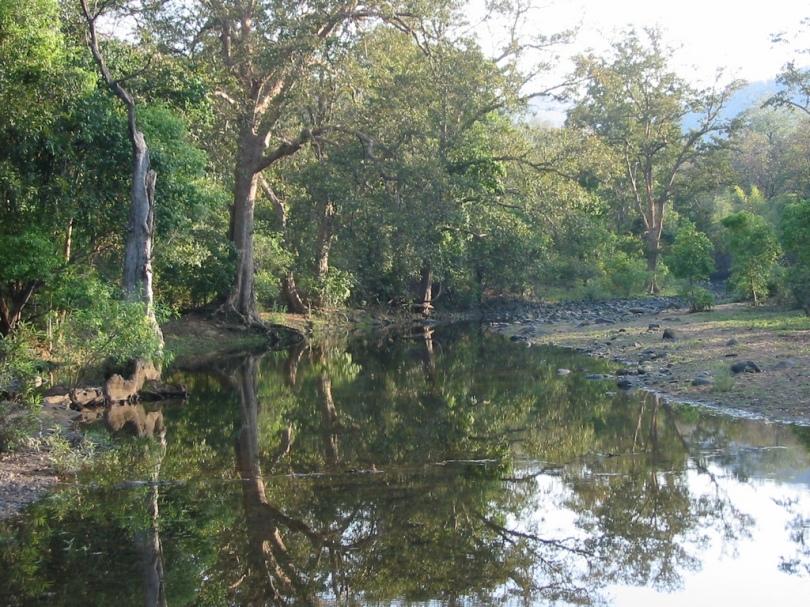 The Satpura variety in Madhya Pradesh