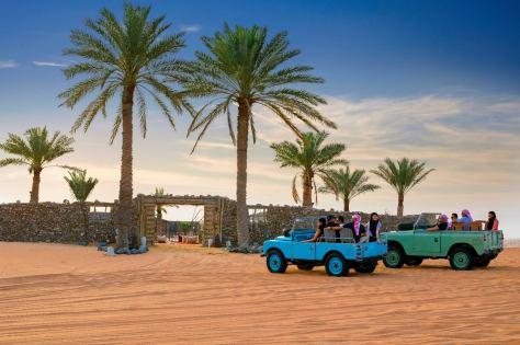 Don't Forget Premium Desert Safaris