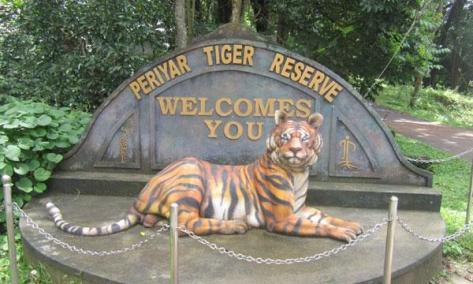 Periyar Tiger Safari, Kerala